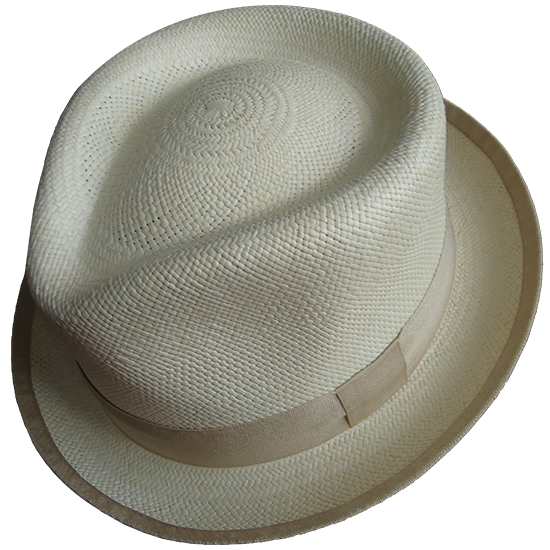 Panama Hat Carnival Collection - Nice - Image Carnival