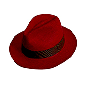 Panama Cuenca Hat - Passion