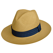 Panama  Hat Artic