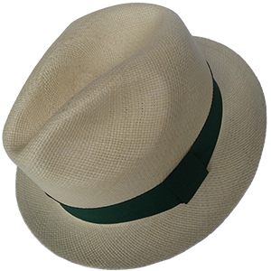 Panama Nature Hat