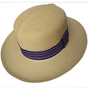 Panama Beach Hat